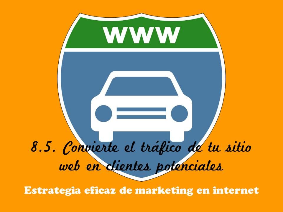Tráfico sitio web